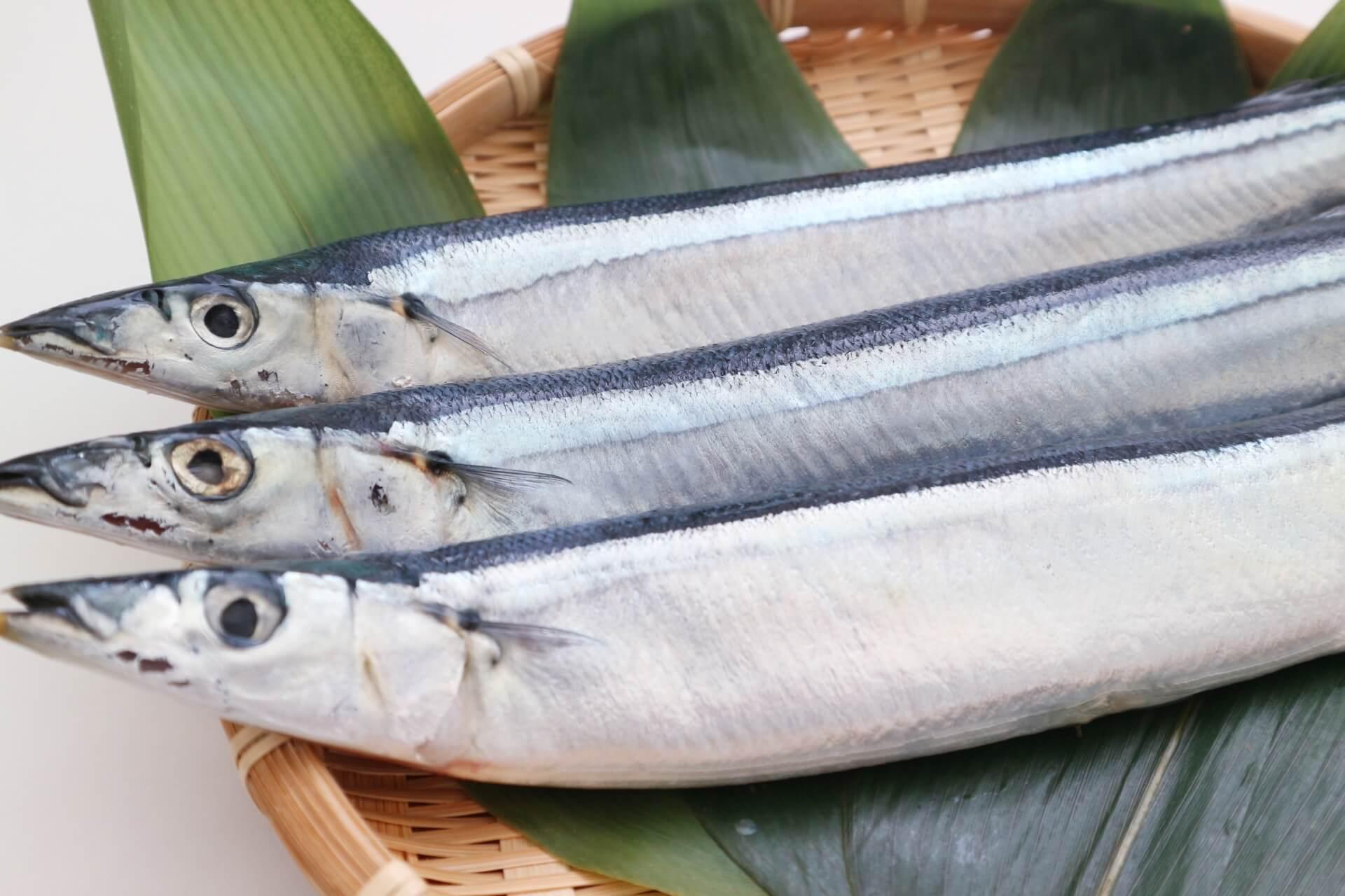 魚を美味しく食べたい
