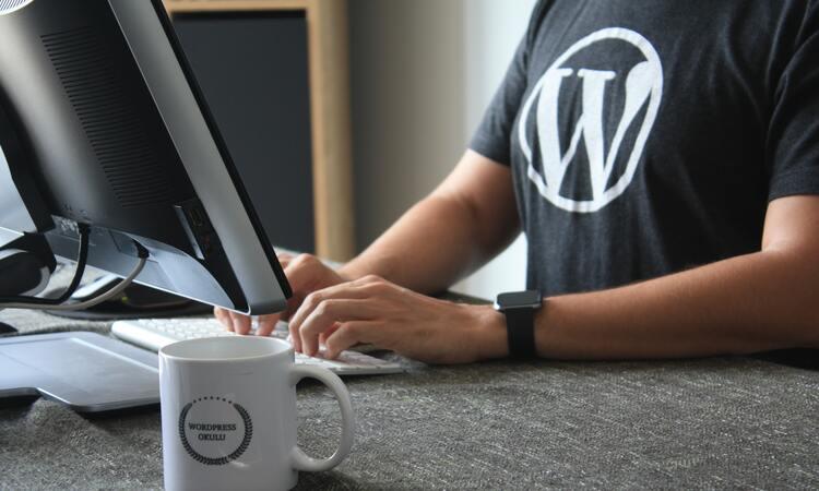 Webサイト制作者必見!WordPressのオススメ有料テーマ